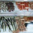 Ondokuz Mayıs Üniversitesi (OMÜ) Samsun Sağlık Yüksekokulu Beslenme ve Diyetetik Bölümü Öğretim Üyesi Yrd. Doç. Dr. Pınar Sökülmez, çocukluk çağında balık tüketiminin önemine işaret etti.  Sökülmez, balık ve diğer […]