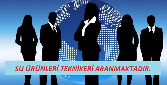 İstanbul/Kavacıkta bulunan Su Ürünleri tesisi için Erkek Su Ürünleri Teknikerine ihtiyaç vardır. İlgilenen arkadaşların aşağıdaki mail adresine CV lerini göndermelerini rica ederiz. MÜRACAAT: info@cmbseafood.com