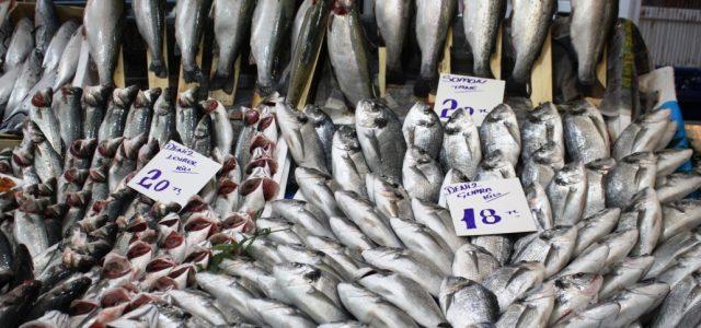 Su ürünleri üretimi 2015 yılında bir önceki yıla göre %25,1 artarak 672 bin 241 ton olarak gerçekleşti. Üretimin %51,4'ünü deniz balıkları, %7,7'sini diğer deniz ürünleri, %5,1'ini iç su ürünleri ve […]